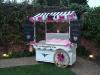 braxted-park-wedding