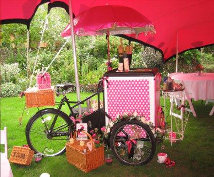 Ice Cream Bike Wedding
