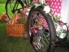 ice-cream-tricycle-custom